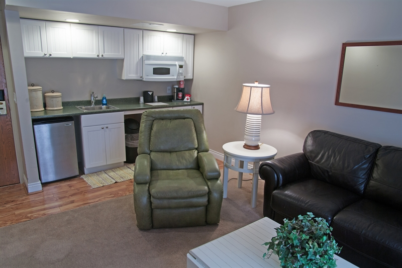 King Suite with Lake View Pet Friendly - Living Area and Kitchenette